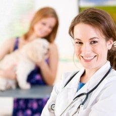 Ветеринарный врач на дом!