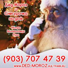 Дед Мороз в Дедовске