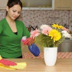 Помощница по хозяйству с проживанием