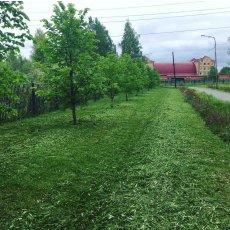 Покос травы триммером по низкой цене за сотку Тюмень.