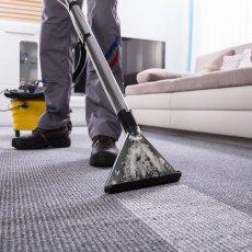 Химчистка ковров на дому/офисе