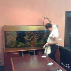 Разовое обслуживание аквариумов