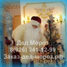 Заказ Деда Мороза Куркино, Химки, Лобня, Сходня, Зеленоград, Химки