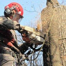 Садовые работы и уборка участка