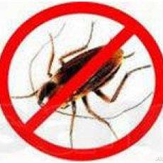 Уничтожение насекомых в квартирах