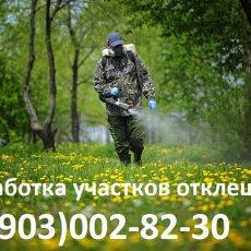 Уничтожение - выведение - обработка клопов в Щелково