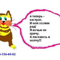Кастрация котов, кобелей на дому