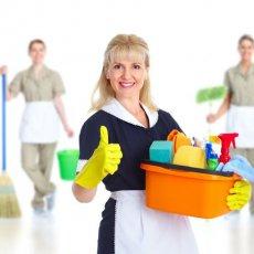 Домработница/помощник по хозяйству