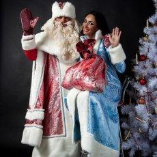 Дед Мороз на дом,на елку в офис