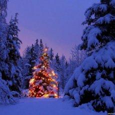 Новогоднее поздравление от Деда Мороза и Снегурочки на дом!