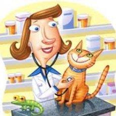 Ветеринар. Уколы капельницы на дому