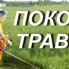 Скошу траву (в выходные дни)