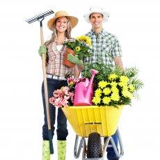 Требуется семейная пара в загородный дом
