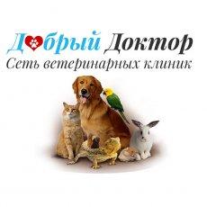 Вызов ветеринара в Московской области