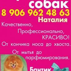 Стрижка собак Бийск