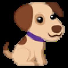 Груминг собак и кошек (стрижка)